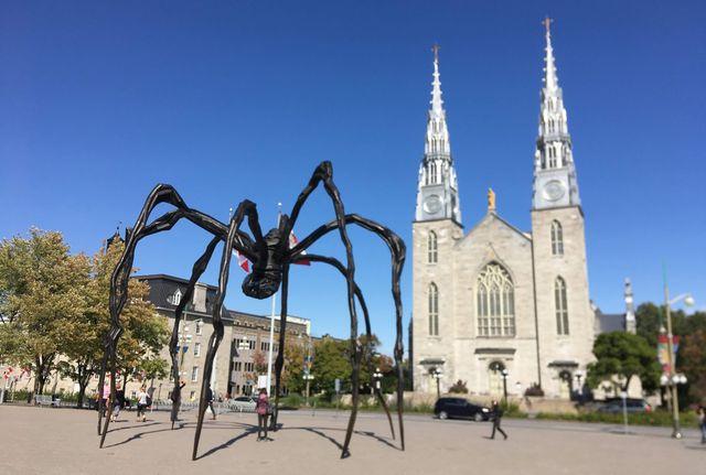巨大クモ「ママン」