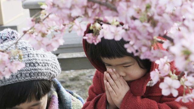 東日本大震災、復興への思い