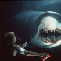 サメ映画にハズレなし!傑作13選