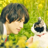 ツンデレ猫にメロメロ!10月の5つ星映画5作品はこれだ!