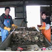 東日本大震災後を追い続ける映像作家たち