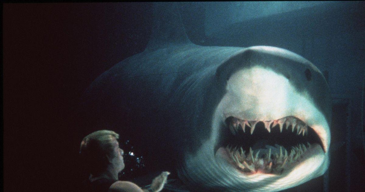 映画 サメ