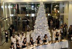 クリスマスシーズン到来!新宿ピカデリーにホワイトツリーが出現!!