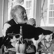 文豪アーネスト・ヘミングウェイの晩年を描く映画が製作スタート