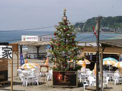 夏なのに!巨大クリスマスツリーが突如出現!湘南ビーチは大さわぎ?