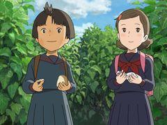 映画で使用された実際の35mmフィルムがカットされて特典に!『マイマイ新子』DVD