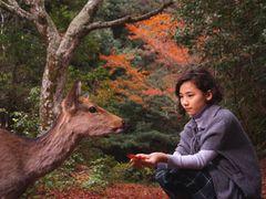 本木雅弘、娘の伽羅の演技に合格点!…も「仕事を続ける意思はありません」と父の顔も崩さず