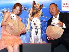 ソフトバンクお父さん犬、子どもたちを初お披露目!超かわいいっ!犬好きの小倉優子もメロメロ