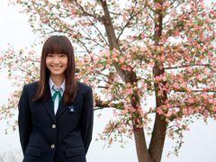 『アリエッティ』に先駆けて、ついに『トイ・ストーリー3』が100億円突破!!『ハナミズキ』もV2!!