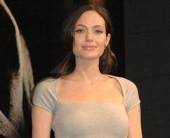 アンジェリーナ・ジョリー監督作品、ボスニア・ヘルツェゴビナ政府が撮影許可を取り消す