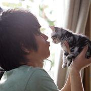 Webアニメ世界初の実写化!『キミとボク』主演は中村蒼!猫声は「エヴァ:破」の声優・坂本真綾!