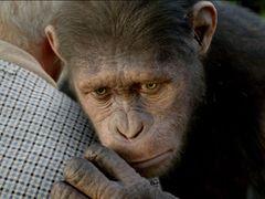 『猿の惑星』が2週連続トップで動員100万人突破!市川海老蔵主演の『一命』は初登場で4位発進