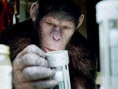 口コミ効果が広がった?『猿の惑星』が3週連続で首位獲得!! 『カウボーイ&エイリアン』『スマグラー』も初登場!