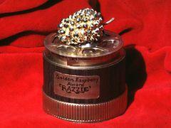 最低の映画を選ぶラジー賞、今年の結果発表はエイプリルフールに!ノミネーション発表はアカデミー賞授賞式前日