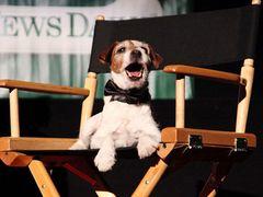 いよいよ目前に迫った第84回アカデミー賞授賞式では、ココに注目!