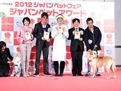 ソフトバンク犬カイくん、新「ポチたま」犬を若造扱い!?- 第1回ジャパンペットアワード表彰式