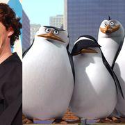 カンバーバッチがアニメ『ペンギンズ・オブ・マダガスカル』に参加!動物のCIAエージェント役