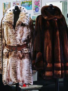 全米初!カリフォルニア州ウエストハリウッド市が毛皮を使用した洋服などの販売を禁止する法律を発効