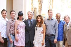 世界一の最高視聴率ドラマは「NCIS ~ネイビー犯罪捜査班」