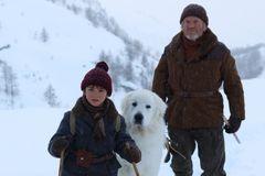 真っ白なフワフワ犬と少年の命懸けの冒険!「名犬ジョリィ」原作の映画化新映像