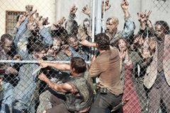「ウォーキング・デッド」の生存者はわずか38万人