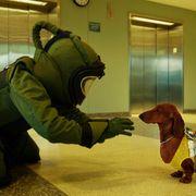 去勢されそうになる犬の運命…鬼才ソロンズの新作ブラックコメディー、来年公開!