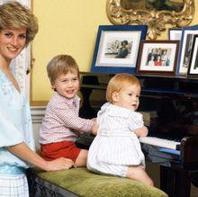 ウィリアム王子、ダイアナ元妃は「悪夢のような祖母になったはず」その真意は?