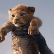 ティモンとプンバァが可愛すぎ!実写版『ライオン・キング』ビジュアルに反響
