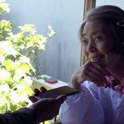 樹木希林さん、小津安二郎ゆかりの場所へ 遺作ドイツ映画本編映像