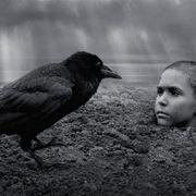 残酷すぎて途中退場者が続出した『異端の鳥』…少年が生き埋めにされる本編映像が公開