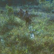 『オノダ(原題)』、第74回カンヌ国際映画祭「ある視点」部門オープニング作品に決定