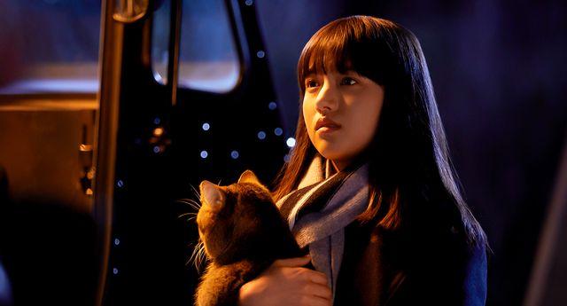 映画/猫のピートが可愛すぎる!『夏への扉』スペシャル映像