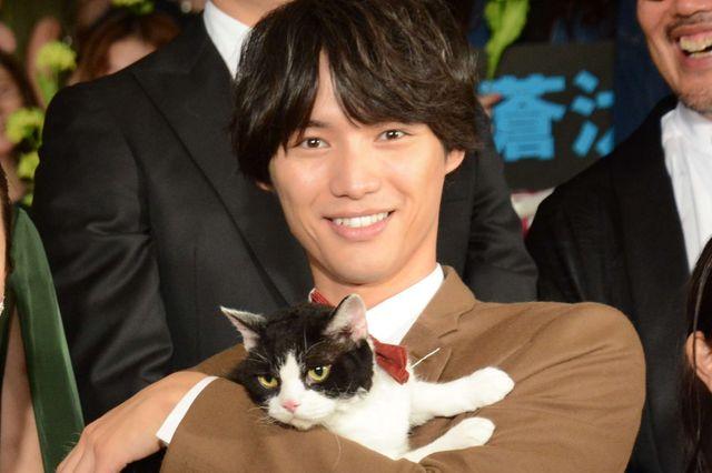 福士蒼汰と猫のナナ