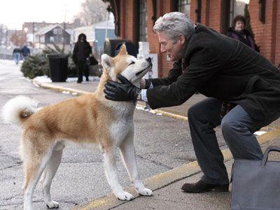 映画『HACHI 約束の犬』より