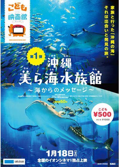 沖縄美ら海水族館 ~海からのメッセージ~