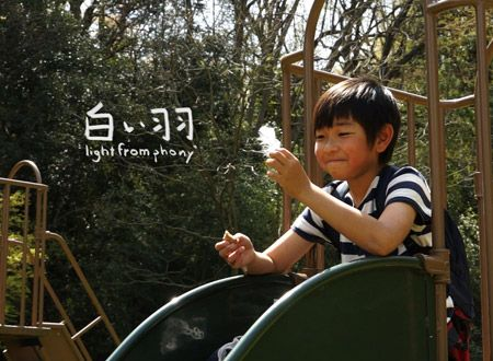 "白い羽 ""Light from Phony"""