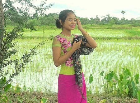 マンダレースター -ミャンマー民族音楽への旅-