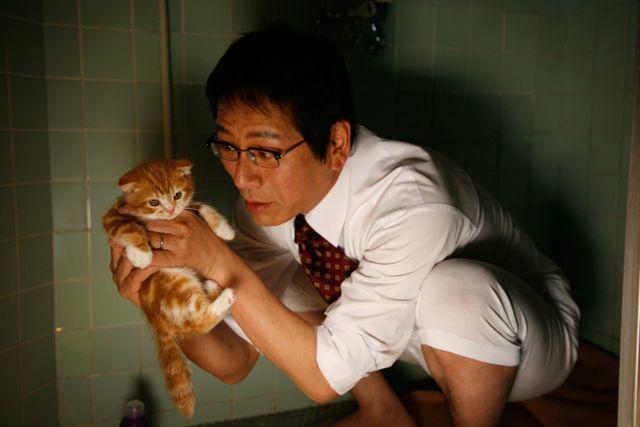愛猫・寅子と出会った作品『ネコナデ』