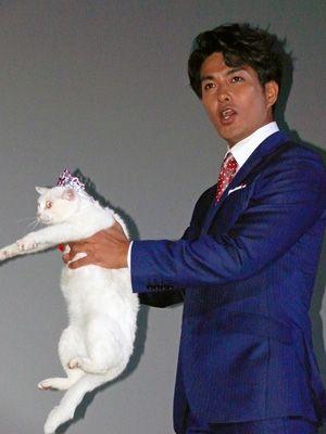 猫とラブラブ?