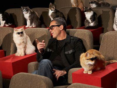 """「なあ猫ちゃん、3パーセントの下落率は、本当にすごいんだぜ!」 -日本では3月17日に公開される映画『長ぐつをはいたネコ』の""""キャット・プレミア""""にて、猫にしゃべりかける、声を担当したアントニオ・バンデラス"""