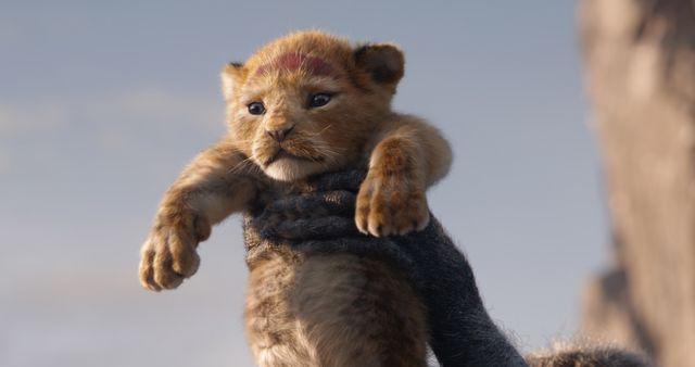 心配ないかわいさ! 実写版『ライオン・キング』のシンバ
