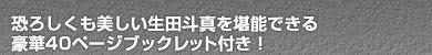 恐ろしくも美しい生田斗真を堪能できる豪華40ページブックレット付き!