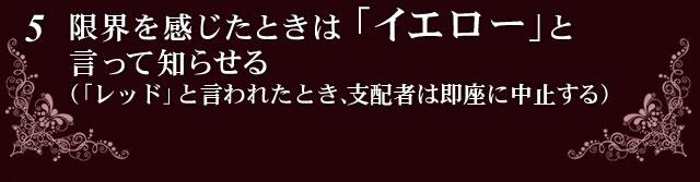 5:限界を感じたときは「イエロー」と言って知らせる(「レッド」と言われたとき、支配者は即座に中止する)