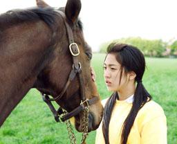 三本木農業高校、馬術部 ~盲目の馬と少女の実話~