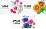 映画『キッズ・オールライト』KIDSの花の種