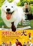 映画『犬飼さんちの犬』チラシ