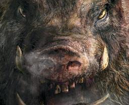 人喰猪、公民館襲撃す!