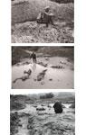映画『始まりも終わりもない』写真家・平間至さん撮り下ろしオリジナルポストカード3枚セット