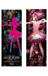 映画『劇場版 魔法少女まどか☆マギカ [新編] 叛逆の物語』スペシャルポスターBOX(2枚セット・全6種)