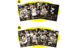 映画『楊家将~烈士七兄弟の伝説~』香港オリジナル・七兄弟ポストカード4枚組セット ※AとBの2種類よりお選びいただけます